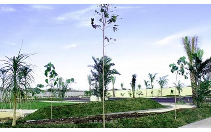 Foto de terreno habitacional en venta en  , temozon norte, mérida, yucatán, 1370901 No. 03
