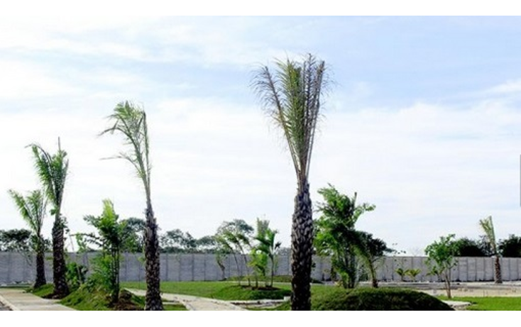 Foto de terreno habitacional en venta en  , temozon norte, mérida, yucatán, 1370901 No. 04