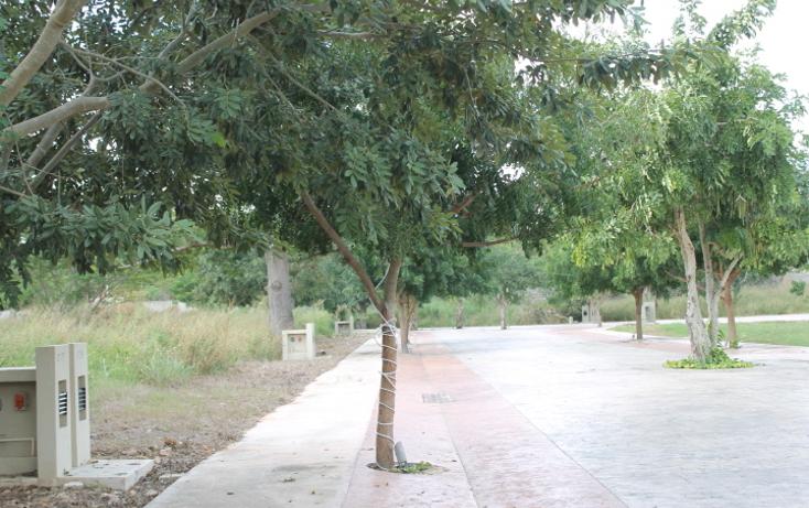 Foto de terreno habitacional en venta en  , temozon norte, mérida, yucatán, 1527645 No. 04