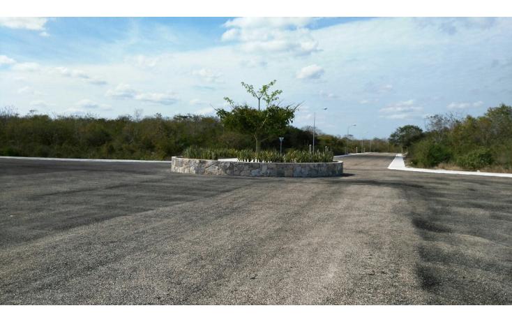 Foto de terreno habitacional en venta en  , temozon norte, m?rida, yucat?n, 1661968 No. 01