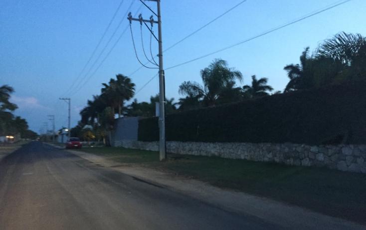 Foto de terreno habitacional en venta en  , temozon norte, mérida, yucatán, 1757274 No. 05