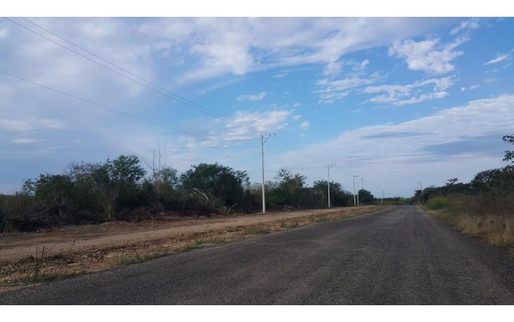 Foto de terreno habitacional en venta en  , temozon norte, m?rida, yucat?n, 1775048 No. 01