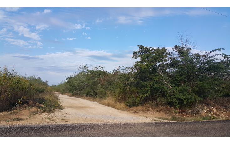 Foto de terreno habitacional en venta en  , temozon norte, m?rida, yucat?n, 1775048 No. 04