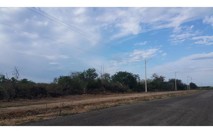 Foto de terreno habitacional en venta en  , temozon norte, m?rida, yucat?n, 1775048 No. 10