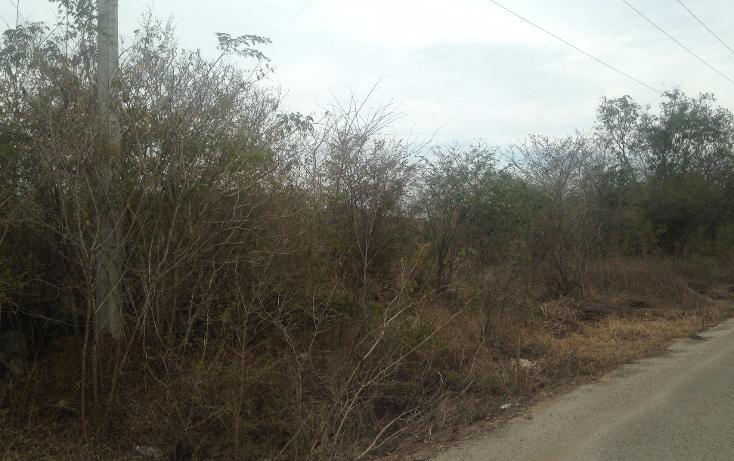 Foto de terreno habitacional en venta en  , temozon norte, mérida, yucatán, 1778758 No. 01