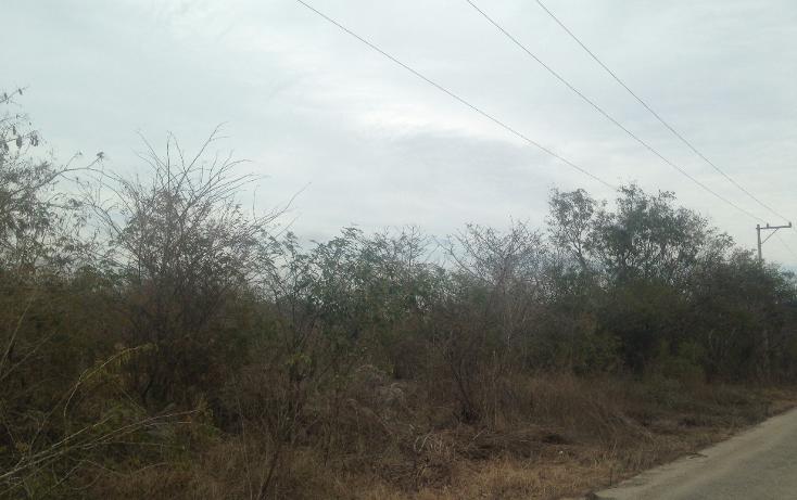 Foto de terreno habitacional en venta en  , temozon norte, mérida, yucatán, 1778758 No. 02