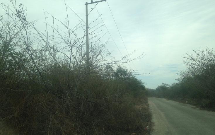 Foto de terreno habitacional en venta en  , temozon norte, mérida, yucatán, 1778758 No. 03