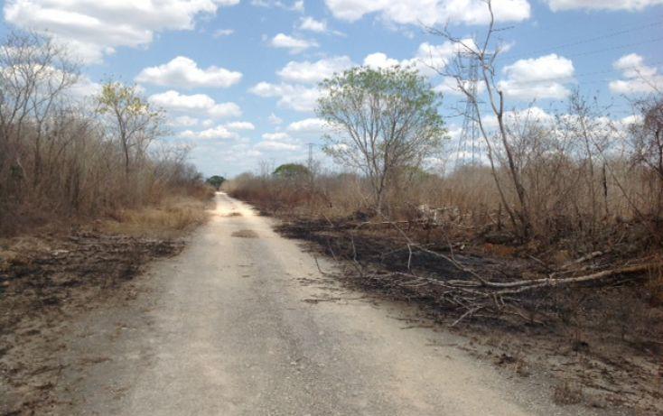 Foto de terreno habitacional en venta en, temozon norte, mérida, yucatán, 1831672 no 05