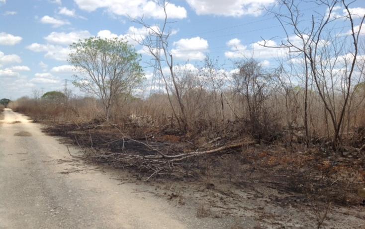 Foto de terreno habitacional en venta en  , temozon norte, m?rida, yucat?n, 1831672 No. 06