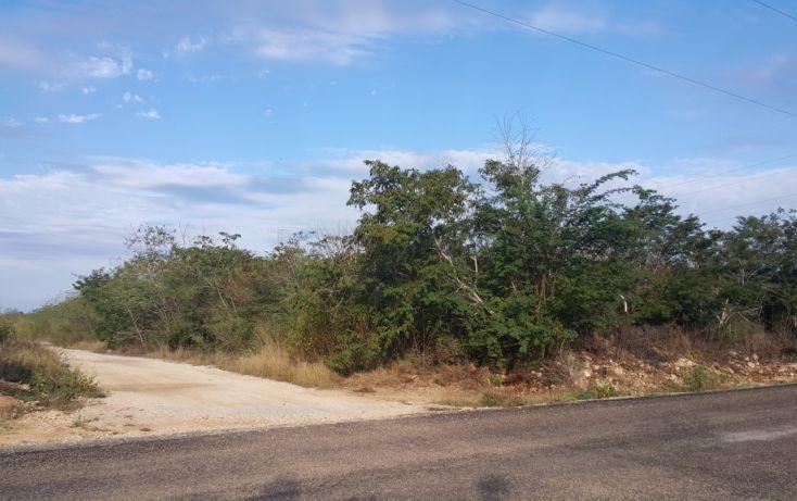 Foto de terreno comercial en venta en, temozon norte, mérida, yucatán, 1981280 no 02