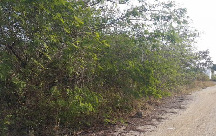 Foto de terreno comercial en venta en, temozon norte, mérida, yucatán, 1981280 no 05