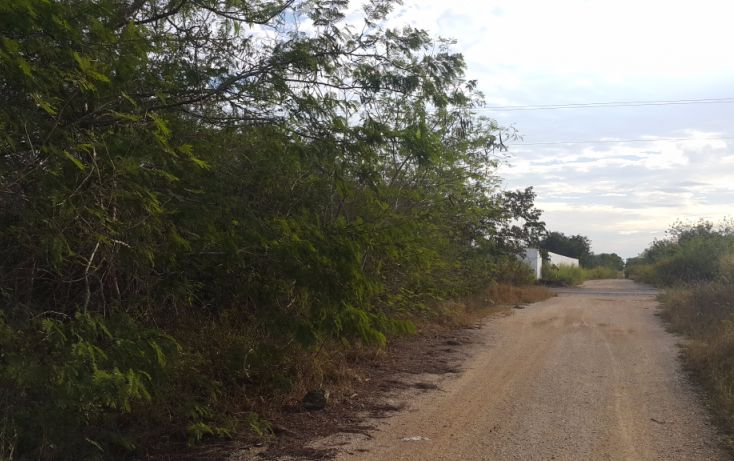 Foto de terreno comercial en venta en, temozon norte, mérida, yucatán, 1981280 no 06