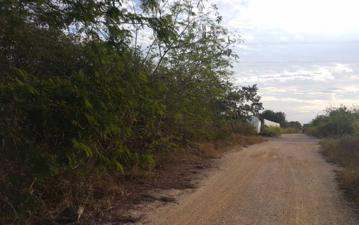 Foto de terreno comercial en venta en, temozon norte, mérida, yucatán, 1981280 no 07