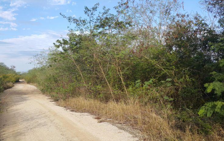Foto de terreno comercial en venta en, temozon norte, mérida, yucatán, 1981280 no 08