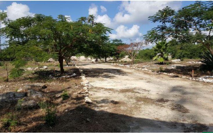 Foto de terreno habitacional en venta en, temozon norte, mérida, yucatán, 2031456 no 03