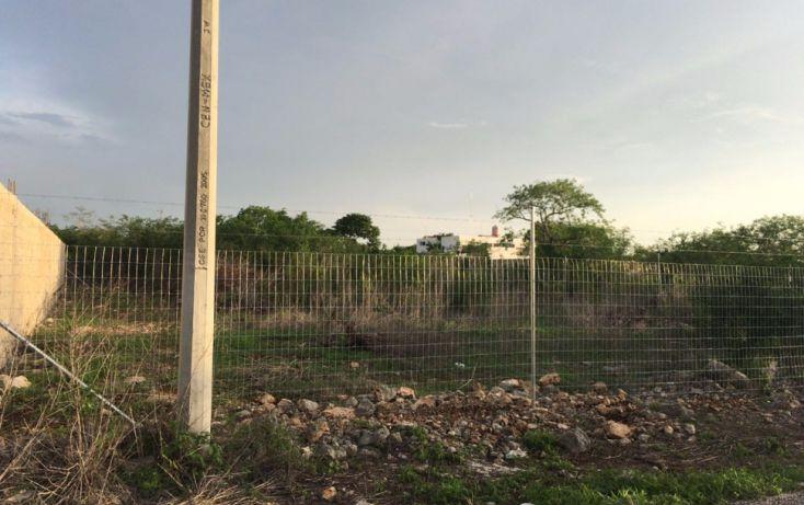Foto de terreno comercial en venta en, temozon norte, mérida, yucatán, 2034294 no 02