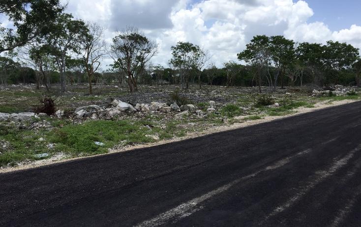 Foto de terreno habitacional en venta en  , temozon norte, m?rida, yucat?n, 2042461 No. 01