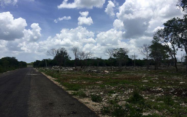 Foto de terreno habitacional en venta en, temozon norte, mérida, yucatán, 2042461 no 03