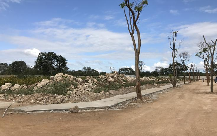 Foto de terreno habitacional en venta en  , temozon norte, mérida, yucatán, 2729197 No. 03