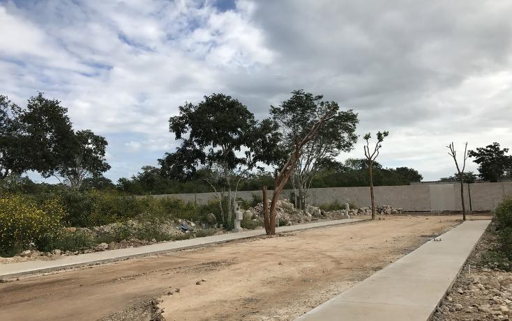 Foto de terreno habitacional en venta en  , temozon norte, mérida, yucatán, 2729197 No. 04
