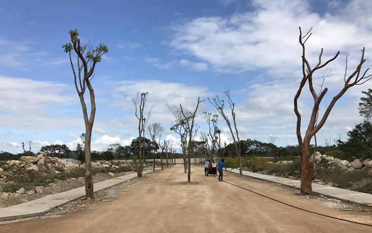 Foto de terreno habitacional en venta en  , temozon norte, mérida, yucatán, 2729197 No. 05