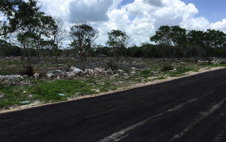 Foto de terreno habitacional en venta en  , temozon norte, mérida, yucatán, 613536 No. 01