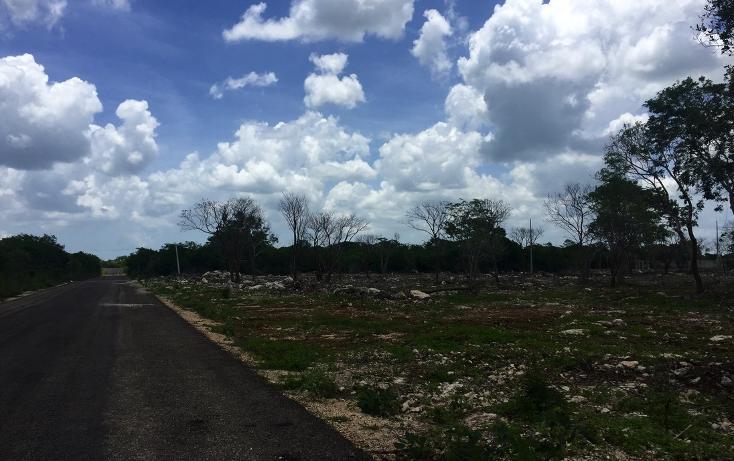 Foto de terreno habitacional en venta en  , temozon norte, mérida, yucatán, 613536 No. 02