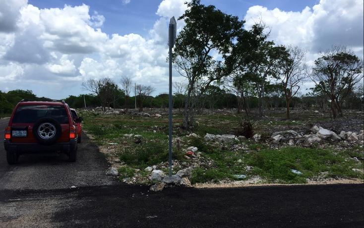Foto de terreno habitacional en venta en  , temozon norte, mérida, yucatán, 613536 No. 03