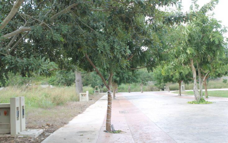Foto de terreno habitacional en venta en, temozon norte, mérida, yucatán, 942715 no 04
