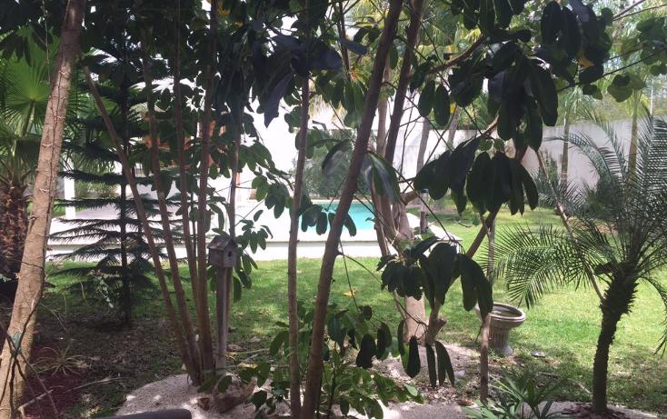 Foto de casa en venta en  , temozon, temozón, yucatán, 1251195 No. 02