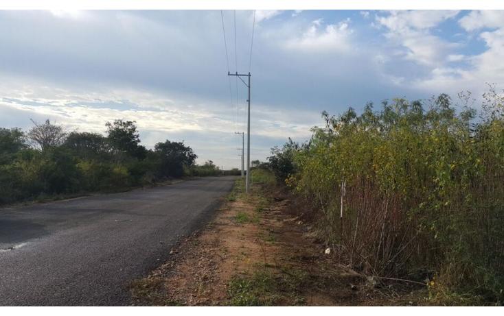 Foto de terreno comercial en venta en  , temozon, temoz?n, yucat?n, 1738354 No. 03