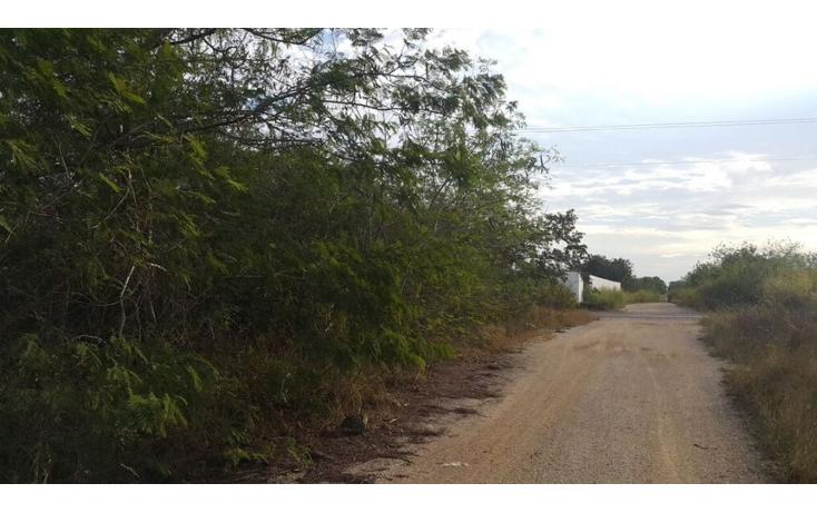 Foto de terreno comercial en venta en  , temozon, temoz?n, yucat?n, 1738354 No. 05