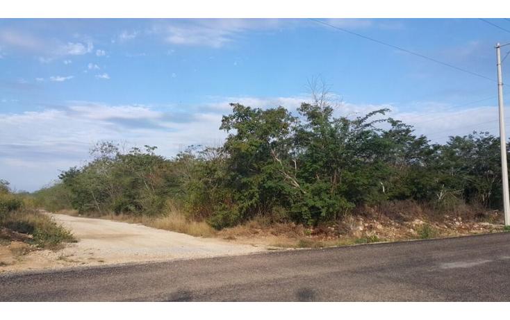 Foto de terreno comercial en venta en  , temozon, temoz?n, yucat?n, 1738354 No. 08