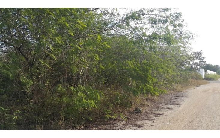 Foto de terreno comercial en venta en  , temozon, temoz?n, yucat?n, 1738354 No. 09