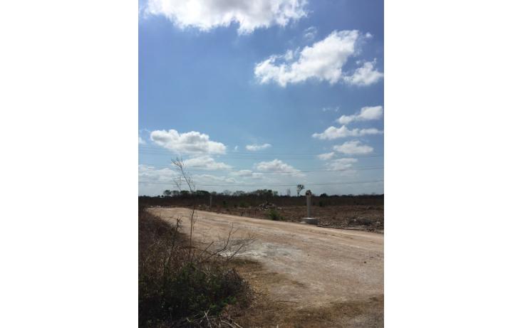 Foto de terreno habitacional en venta en  , temozon, temoz?n, yucat?n, 1808640 No. 03