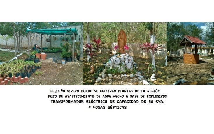 Foto de local en venta en  , temozon, temozón, yucatán, 1863280 No. 14
