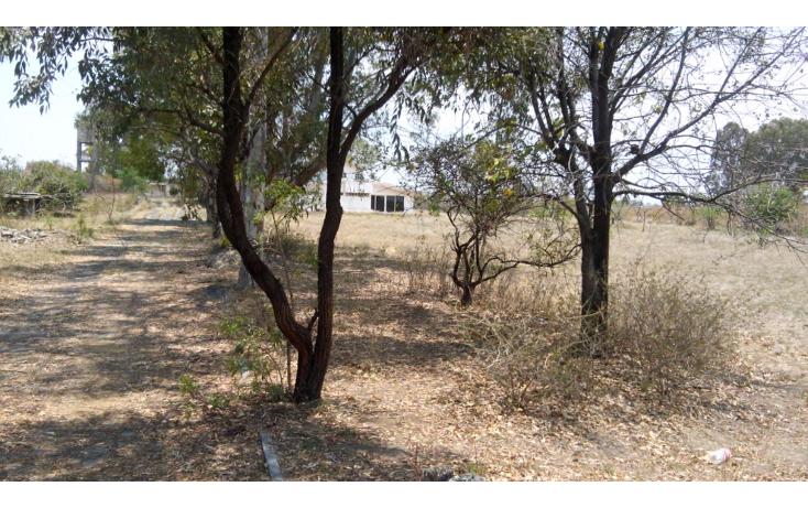 Foto de terreno habitacional en venta en  , tenextepec, atlixco, puebla, 1130615 No. 01