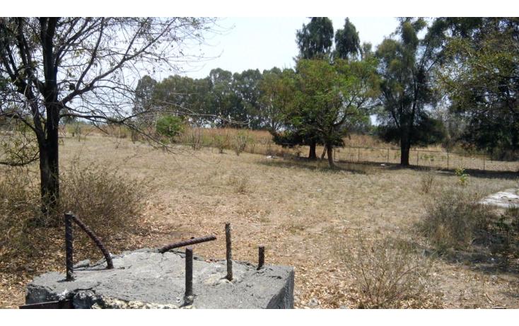 Foto de terreno habitacional en venta en  , tenextepec, atlixco, puebla, 1130615 No. 02