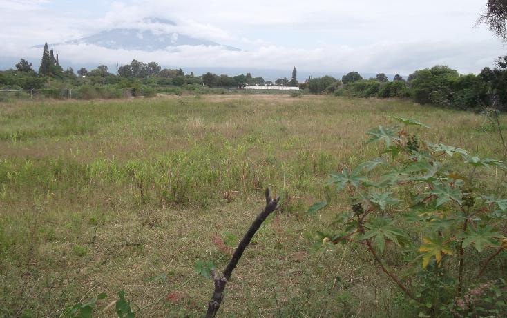Foto de terreno habitacional en venta en  , tenextepec, atlixco, puebla, 1275633 No. 06