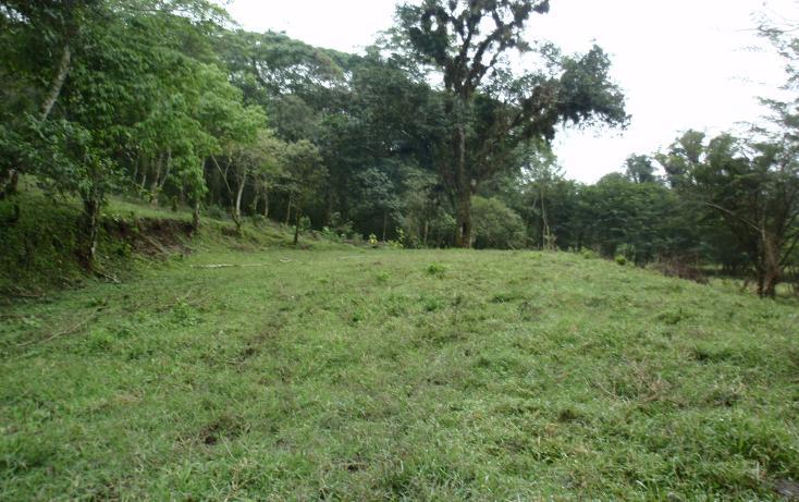 Foto de terreno habitacional en venta en  , teocelo, teocelo, veracruz de ignacio de la llave, 1549680 No. 03