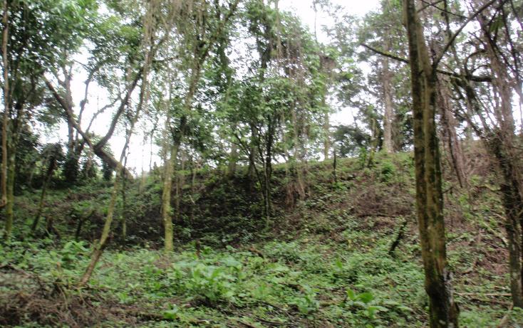 Foto de terreno habitacional en venta en  , teocelo, teocelo, veracruz de ignacio de la llave, 1549680 No. 16