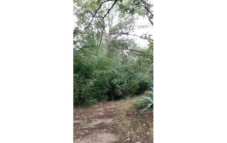Foto de terreno habitacional en venta en  , teopisca, teopisca, chiapas, 1373569 No. 06