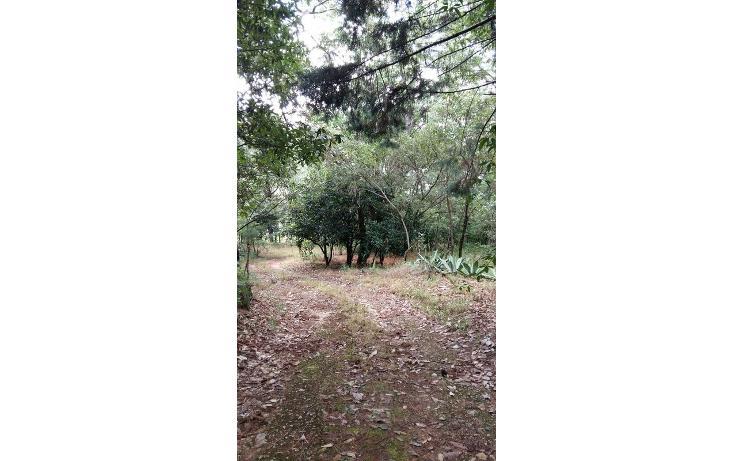 Foto de terreno habitacional en venta en  , teopisca, teopisca, chiapas, 1373569 No. 09