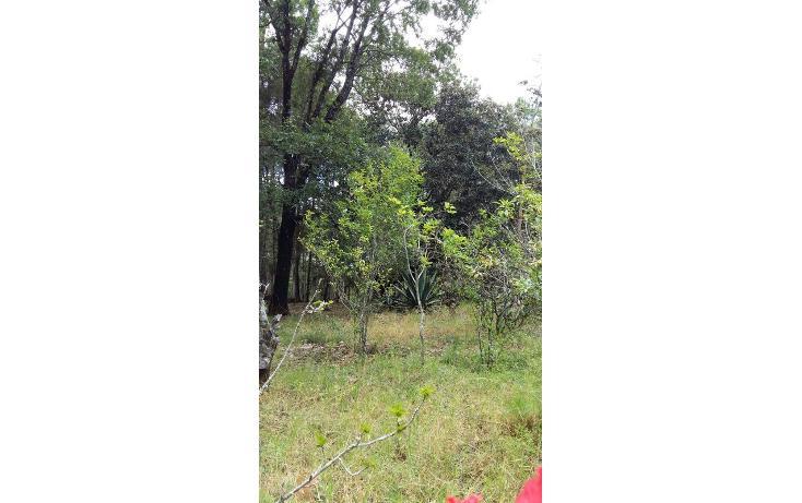 Foto de terreno habitacional en venta en  , teopisca, teopisca, chiapas, 1373569 No. 10