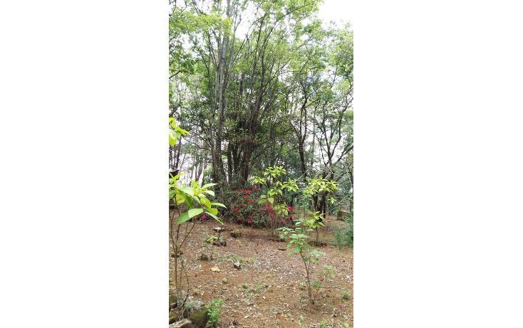 Foto de terreno habitacional en venta en  , teopisca, teopisca, chiapas, 1373569 No. 12