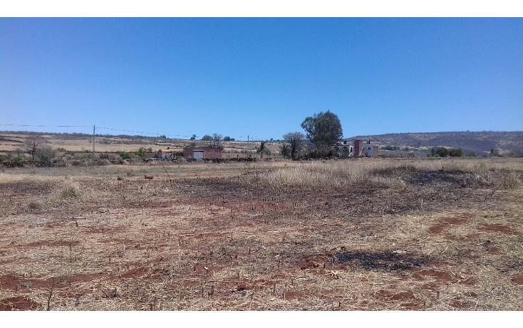 Foto de terreno habitacional en venta en  , tepatitlán de morelos centro, tepatitlán de morelos, jalisco, 1828663 No. 06