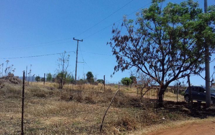 Foto de terreno habitacional en venta en, tepatitlán de morelos centro, tepatitlán de morelos, jalisco, 1894410 no 17