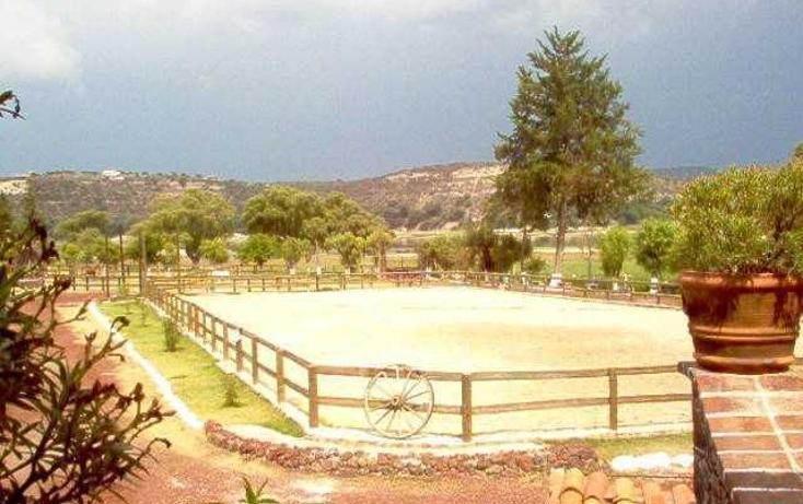 Foto de rancho en venta en  , tepeji, tepeji del río de ocampo, hidalgo, 1835814 No. 10
