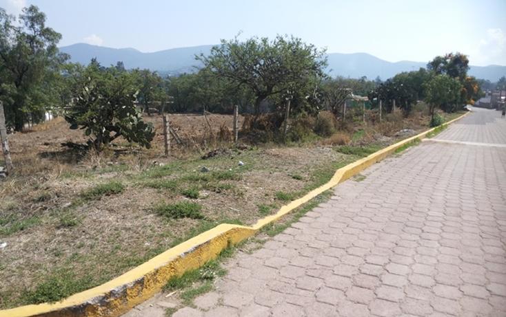 Foto de terreno habitacional en venta en  , tepetlaoxtoc de hidalgo, tepetlaoxtoc, méxico, 1129529 No. 01