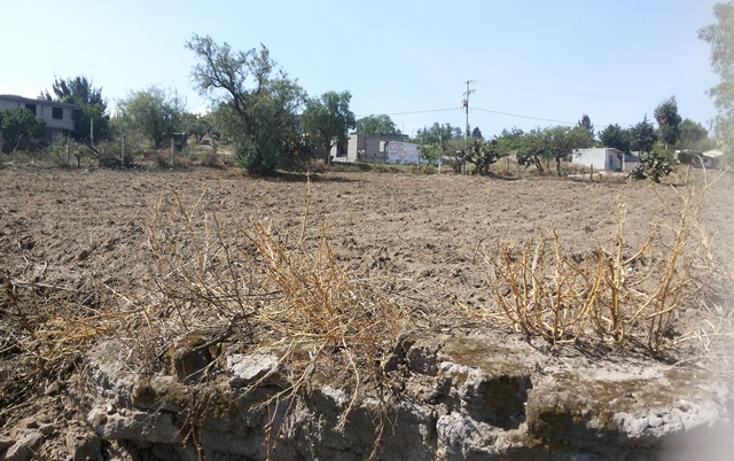 Foto de terreno habitacional en venta en  , tepetlaoxtoc de hidalgo, tepetlaoxtoc, méxico, 1129529 No. 02